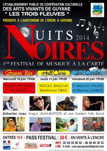 Affiche Festival Nuits Noires 2014 web